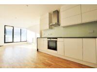 Fantastic 2 bedroom, 2 bathroom penthouse flat near Old St EC2