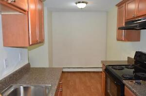 Newly Renovated Two Bedroom Apartment! Call (306)314-0155