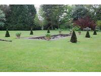 Gardening / Landscape gardening M.J.W Carr Landscape Gardening