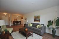 Clayton Park-Bright-Spacious-Updated-Close to trails & transit!