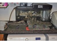 Large Battle Ship for fish tank
