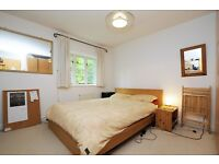 Beautiful 2 bedroom house in the prime location of N16!!!