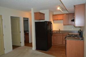 Newly Renovated Bachelor Suite Available for Rent!