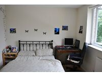 Bright Double bedroom in a nice House with large Garden!!!!!!