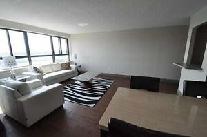 One Month Free on Spacious and Modern Suites! Kitchener / Waterloo Kitchener Area image 7