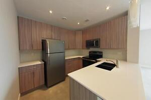Brand New 2 Bedroom Rental Suite - 1/2 Month Free Rent
