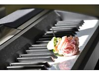 Fun Music Room Private Piano Lesson / Percussion / Music Theory (Hampshire & Surrey area)