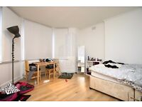 LOVELY STUDIO APMT- EXCELLENT CONDITION- FURNISHED THROUGHOUT- FEW BILLS INC- GREAT FOR 1-2 PEOPLE