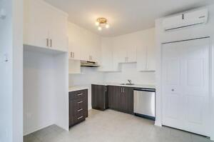 New 1 bedroom for rent, 3 1/2, Plateau 10 min from Ottawa