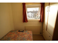 Double room in shared house with nice garden, close to the Quay, new kitchen and friendly housemates