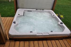 Hot Tubs & Pools Kingston Kingston Area image 4