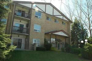 115 Greenwood Drive - Two Bedroom Apartment Apartment for Rent Stratford Kitchener Area image 3