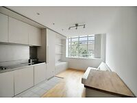 LARGE STUDIO APARTMENT - ONLY £1000 - INCLUDES GYM / CONCIERGE /UNDERGROUND PARKING - WILL RENT FAST
