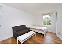 Large, Immaculate, Studios in Shepherds Bush,
