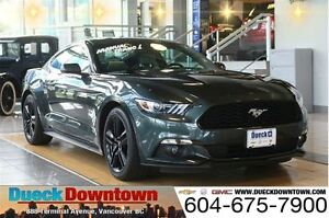 2015 Ford Mustang Ecoboost - Manual - Low Mileage
