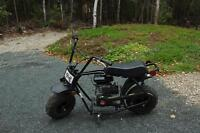 Brand New TaoTao Mini Bike