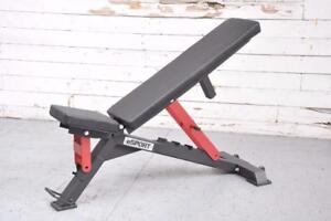 NEW eSPORT ADJUSTABLE BENCH IRON BULL 90 (Not Available in retail stores)