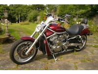 Harley-Davidson VRSCAW V-ROD 1250cc IMMACULATE CONDITION 4460 MILES ONLY