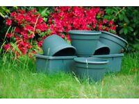Richard Sankey plant pots
