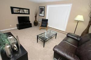 Near the U of S - Beautiful Furnished 1 Bdrm Suite for Rent