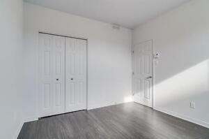 New 1 bedroom for rent, 3 1/2, Plateau 10 min from Ottawa Gatineau Ottawa / Gatineau Area image 13