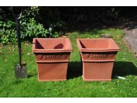 Large terracota planters. £30 the pair.