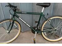retro mountain bike