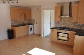 DSS ACCEPTED 1 double bedroom flat FULLY FURNISHED laminate floors FITTED KITCHEN