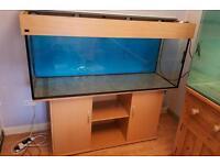 5 foot Aquarium Fish Tank