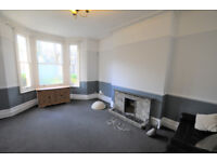 Large two bedroom private garden flat close to transport and the high road available now furn unfurn