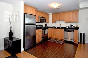 Large, Luxury Bachelor on South Street near DAL/Hospitals!