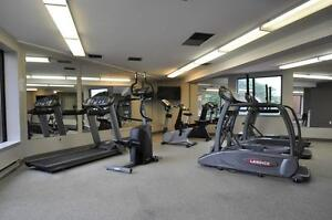 One Month Free on Spacious and Modern Suites! Kitchener / Waterloo Kitchener Area image 4