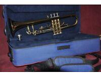 Beginner's Trumpet incl. Carry Bag