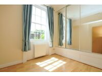 Lovely one bedroom flat, ten minutes walking distance from Highbury and Islington, must see!