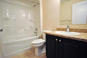 Luxury 1+Den - 1241 Sq.Ft!  In-suite laundry, 9 ft. ceilings Kitchener / Waterloo Kitchener Area image 9