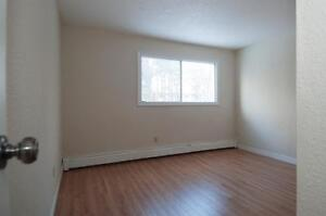 Renovated unit at The Harlingtons for $925
