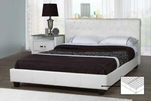 PLATFORM BED FRAME SALE AT KITCHEN AND COUCH (BD-1038)