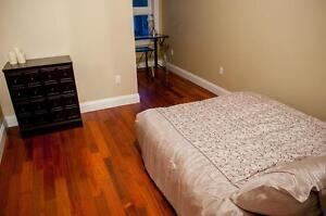 Luxurious Student Units Available in Downtown Kingston Kingston Kingston Area image 4