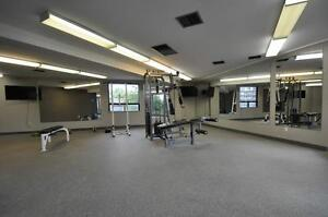 One Month Free on Spacious and Modern Suites! Kitchener / Waterloo Kitchener Area image 3