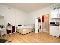 RECENTLY RENOVATED STUDIO APMT- IDEAL FOR SINGLE/COUPLE- STUDENT/PROFESSIONAL- CALL 07398 726 641