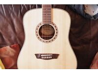 washburn WD10s acoustic guitar as new but with a ding in the side but has no effect