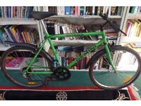 Men's bicycle - Great working condition.