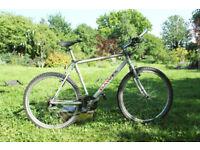 dawes chilliwack mountain bike