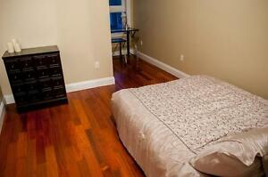One Bed Space Left in Luxurious Student Unit Kingston Kingston Area image 7