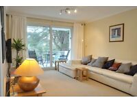 SANDBANKS: Modern, two bedroom, fully furnished apartment : WIFI and parking included.