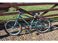 """Boy's / Child's Raleigh Bike 20"""" wheel"""