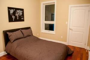 One Bed Space Left in Luxurious Student Unit Kingston Kingston Area image 10