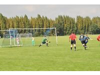 Goalkeepers wanted - Wandsworth Borough Football Club