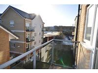 Flat to rent (1 huge double Bedroom, Living room, Bathroom, Kitchen, Balcony & large Store room)