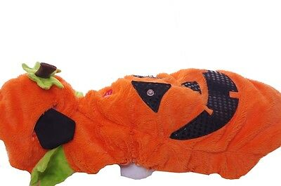 Dog Animal Pet Orange Light Up Pumpkin Halloween Costume Cute Funny Large NEW - Funny Large Dog Halloween Costumes
